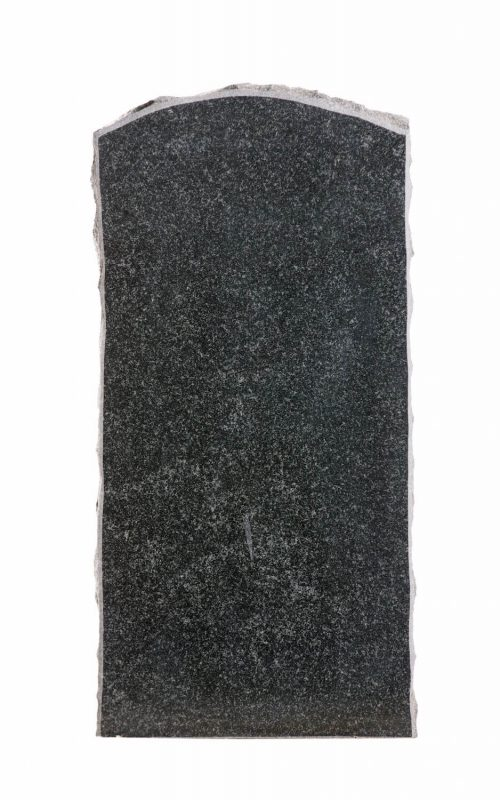 Kamen-100